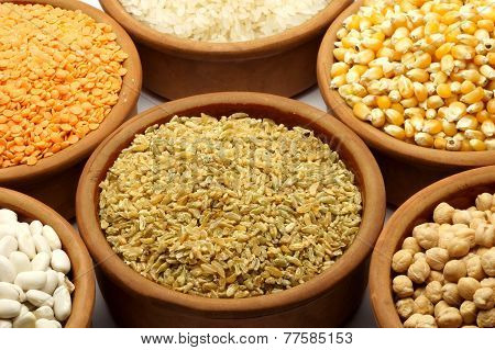 Food - Pulses & Beans