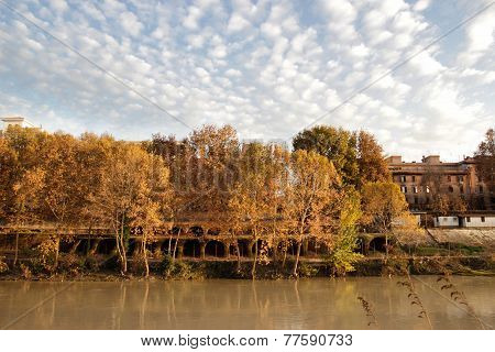Autumn In Testaccio, Rome