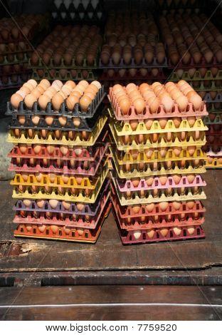 Egg Market