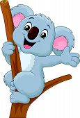 picture of waving hands  - illustration of Cute koala waving hand isolated on white - JPG