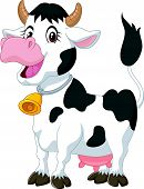 picture of moo-cow  - illustration of Happy cartoon cow isolated on white - JPG