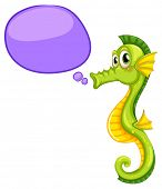 stock photo of seahorse  - A seahorse with an empty callout on a white background  - JPG