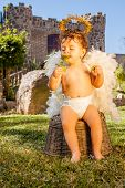 stock photo of little angel  - Image of a little girl wearing angel wings sitting and smelling a flower with a castle of background - JPG