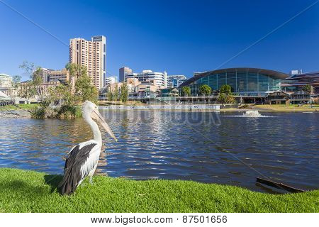 Riverbank Precinct of Adelaide in South Australia during daytime