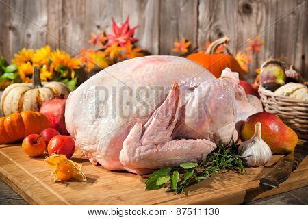Preparing the thanksgiving turkey