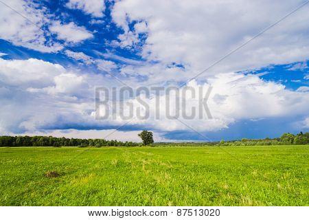 Green Plain Scenic View