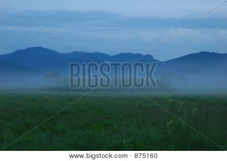 Foggy Blue Landscape