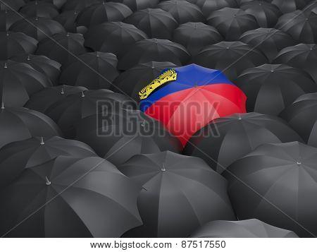 Umbrella With Flag Of Liechtenstein