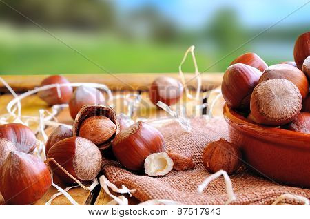 Group Of  Hazelnuts On A Wooden Table In Field Front View