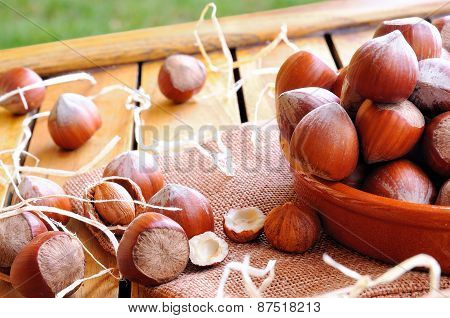 Group Of  Hazelnuts On A Wooden Table In Field