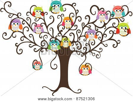Colorful owls in pretty tree