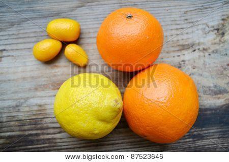 Set of citrus fruits from tangerines, kumquats, oranges and lemons