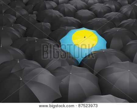 Umbrella With Flag Of Palau