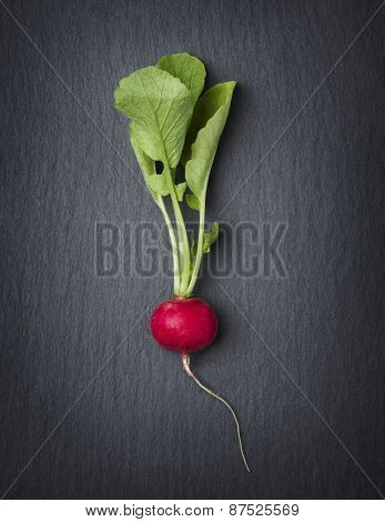 Single vegetable isolated on dark slate stone plate, looking noble.