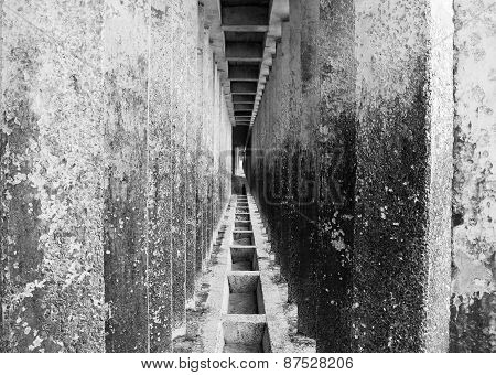 Corridor Of Concrete Pillars