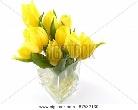 Isolated vase with yellow tulips