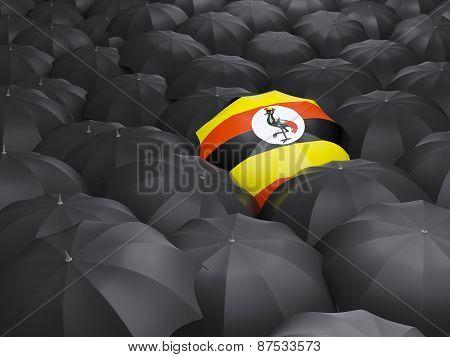 Umbrella With Flag Of Uganda