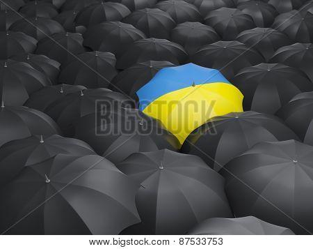 Umbrella With Flag Of Ukraine