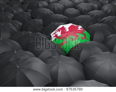 Umbrella With Flag Of Wales