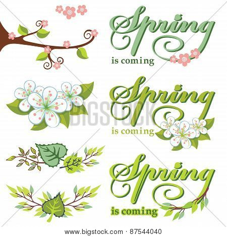 Spring decor set.Green Leaves,branches,flowers,lettering