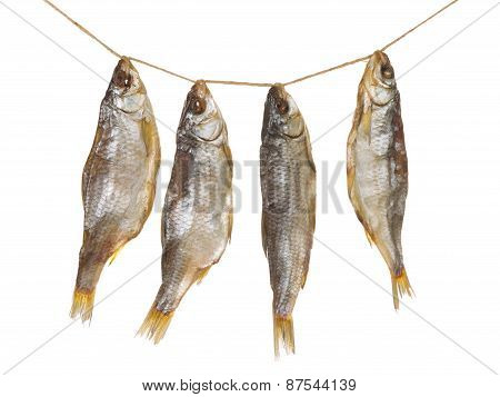 Four Delicious Dried Fish