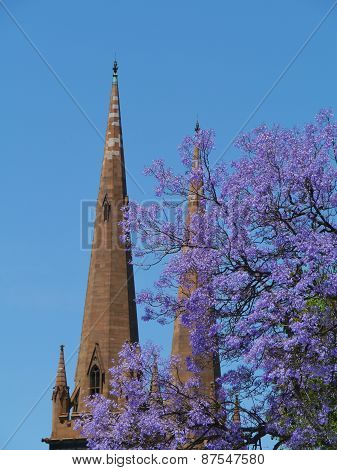 St Patricks Cathedral in Melbourne