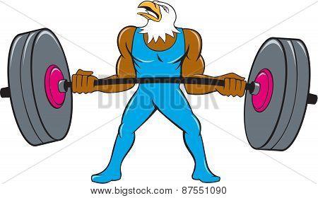 Bald Eagle Weightlifter Lifting Barbell Cartoon