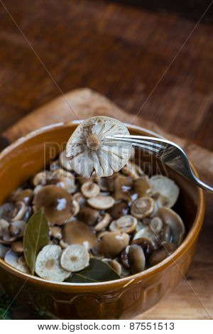 Marinated Honey Fungus In Brown Bowl On Wooden Table.