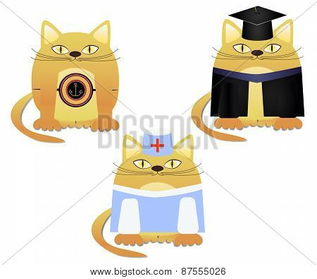 red cat marine graduate and doctor