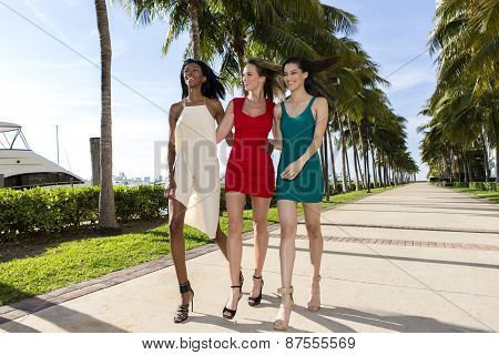 Three women walking, on a warm sunny summer day. Marina with palm trees.
