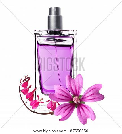 Women's Perfume In Beautiful Bottle And Pink Flowers Isolated On White
