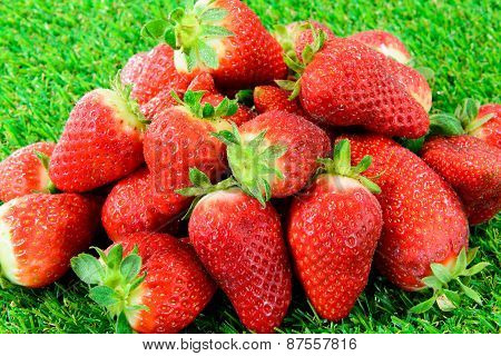 Several Strawberries On Green Grass