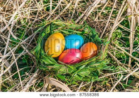 Nest With Colored Eggs