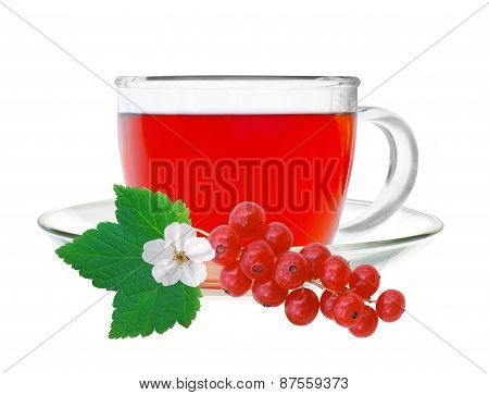 Glass Cup Tea With Fresh Currant Isolated On A White Background