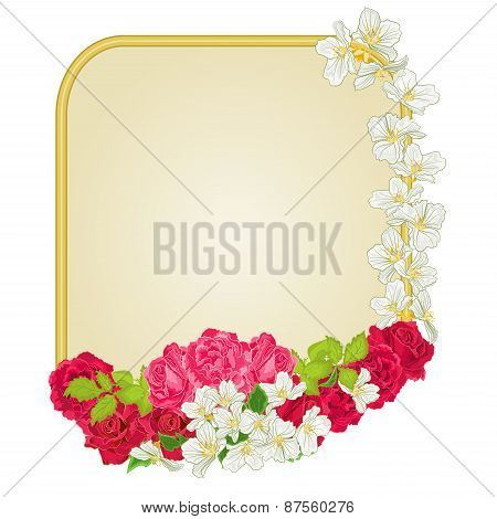 Golden Frame With  Roses And Jasmine Vector