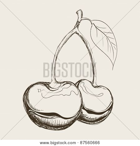 fruit drawn design