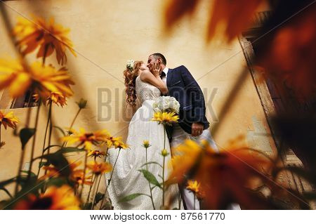 Charming Bride And Stylish Groom Standing Near Bush Flowers