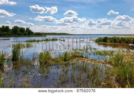 Summer Landscape With Lake On A Sunny Day