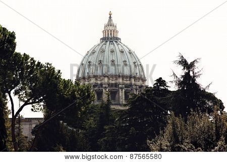 Dome Of Saint Peter's Basilica Rising From The Trees In Vatican City