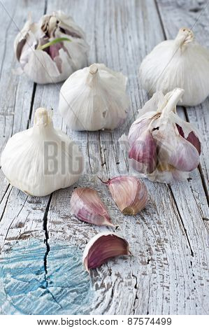 Fresh garlic on wooden background