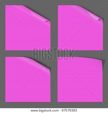 Paper Curled Corner