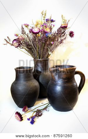 Bouquet Of Straflowers In A Clay Pots