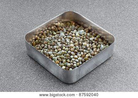 Hemp Seeds In A  Square Metallic Cup