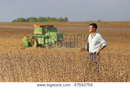 Man On Soybean Field
