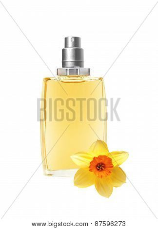 Perfume In Beautiful Bottle And Yellow Narcissus Flower Isolated On White