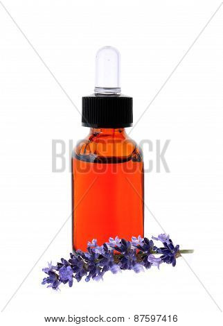 Lavender Herb Flower Leaf Sprigs With An Aromatherapy Essential Oil Dropper Bottle, Isolated On Whit