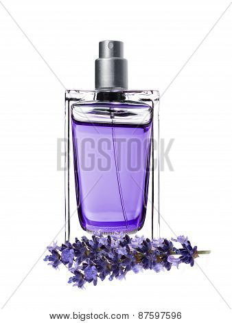 Woman Perfume In Beautiful Bottle And Lavender Flowers Isolated On White