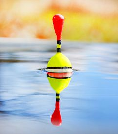 picture of fishing bobber  - Catching of fish - JPG