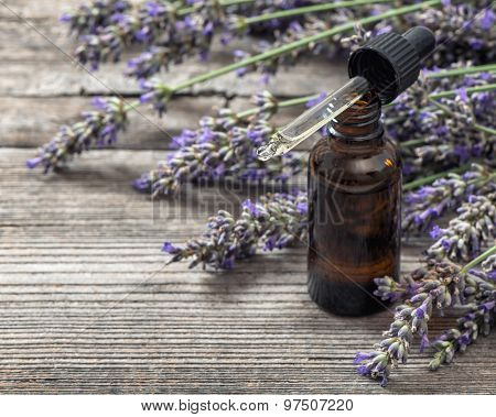 Herbal Oil Essence And Dreied Lavender Flowers On Wooden Background