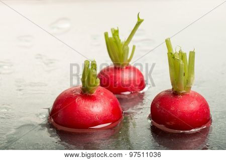 Tops Of Three Red Radishes On Display